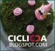 Ciclicca