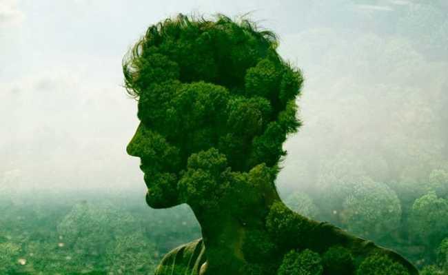 perfil sustentável