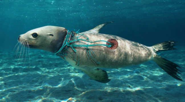 plástico nos oceanos