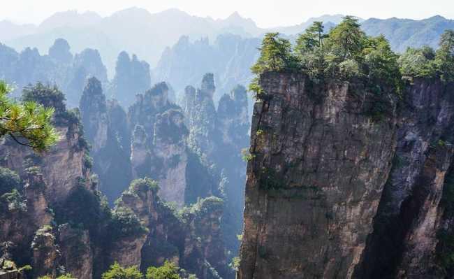 Floresta nativa no sudoeste da China