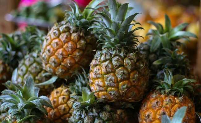 Abacaxi: benefícios do consumo