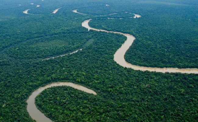 Parque Nacional de Yaguas