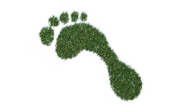 oficina de pegada ecológica