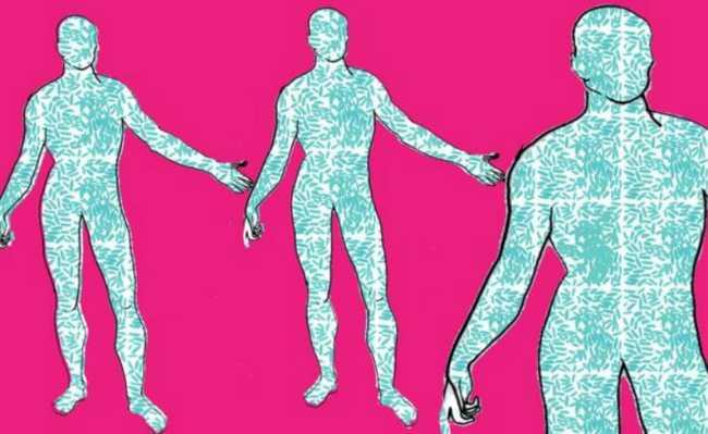 Bactérias no corpo humano