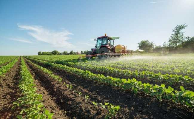 Lei de agrotóxicos pode mudar para pior