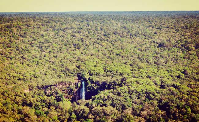 Amazonia legal