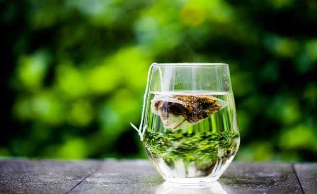 Compressa de chá verde