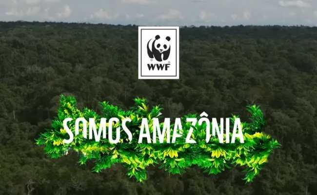 Somos Amazônia