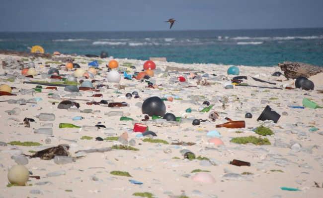 Praia com lixo na areia