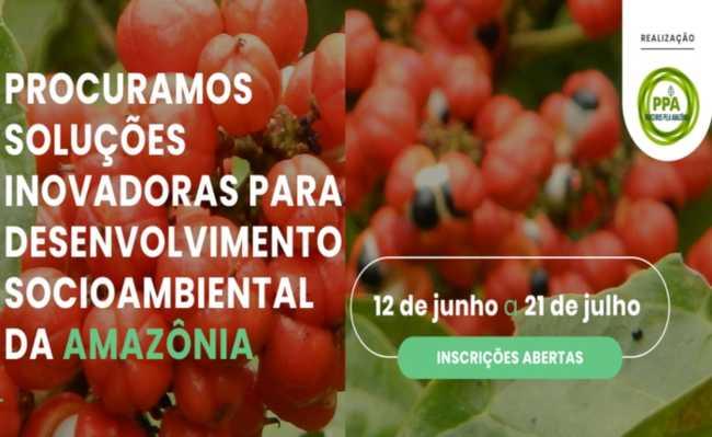 procuramos soluções inovadoras para desenvolvimento socioambiental da Amazônia