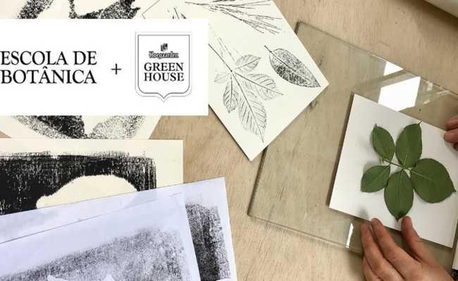 gravuras e carimbos utilizando plantas