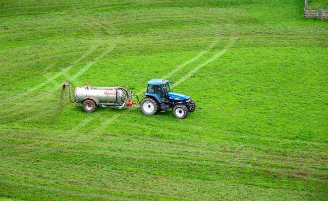 Bactérias substituem fertilizantes químicos