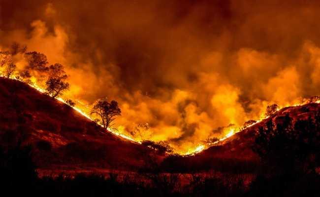 Incêndio florestal