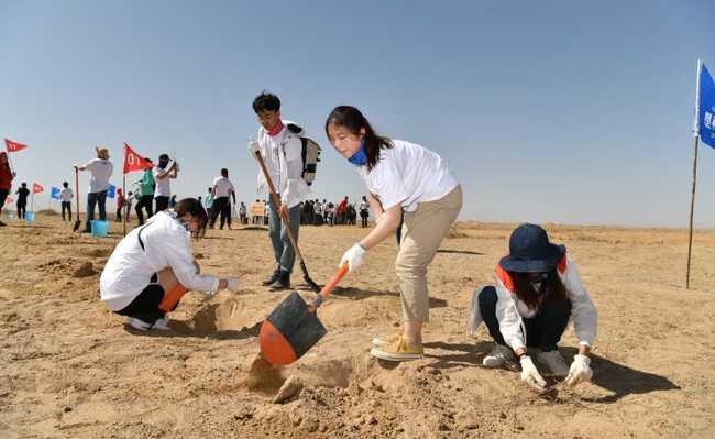 App chinês promove reflorestamento