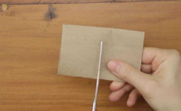Materiais como o papelão são perfeito para fazer uma sementeira