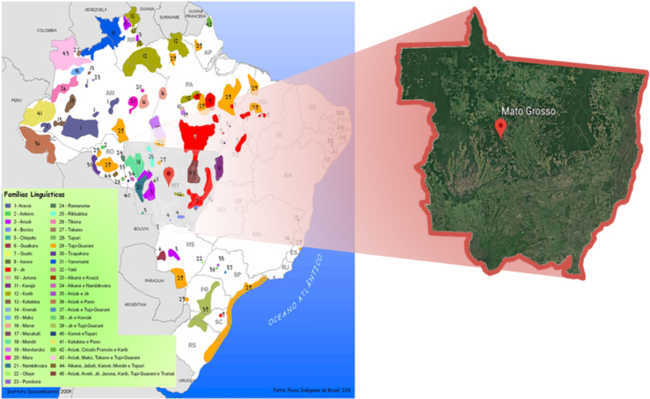 Comparativo do recorte do mapa das famílias linguísticas indígenas do Mato Grosso com a cobertura vegetal do Estado
