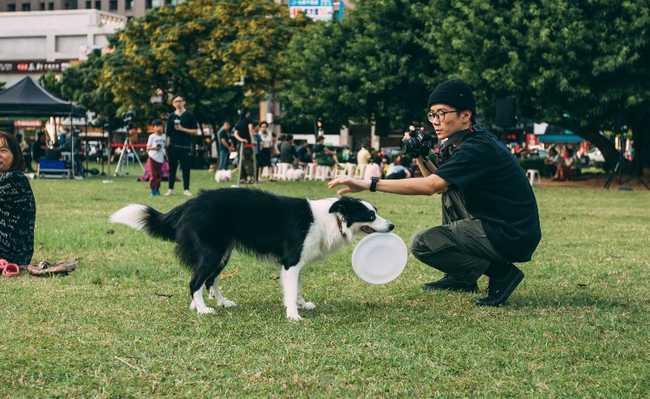 Carne de cachorro deve ser proibida na China