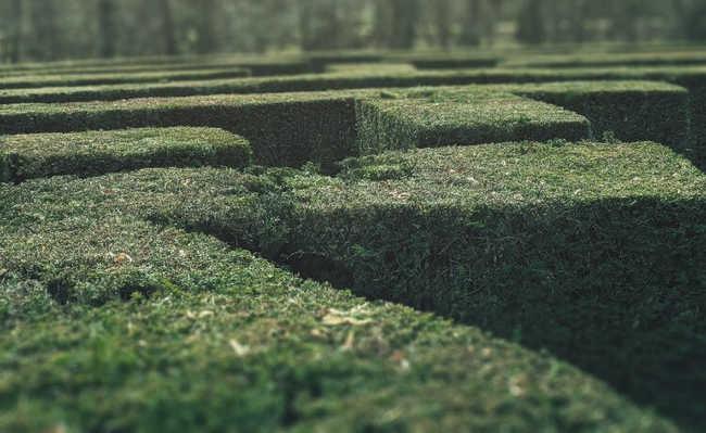 Parque-labirinto