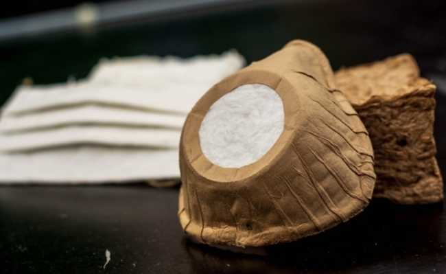 Máscara biodegradável