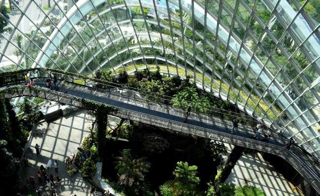 Arquitetura biomimética