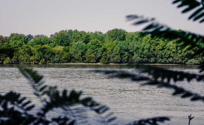 Área de Preservação Permanente