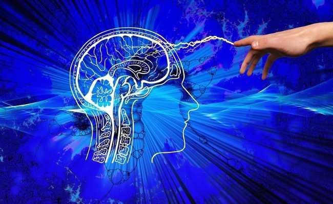 consciência cérebro laboratório