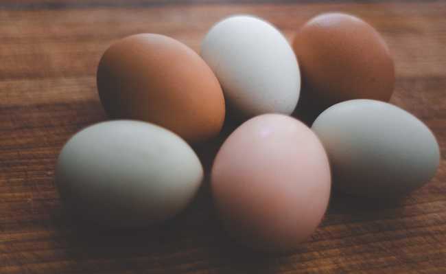 diabético pode comer ovo