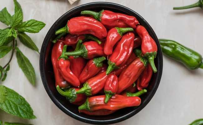 pimenta chili