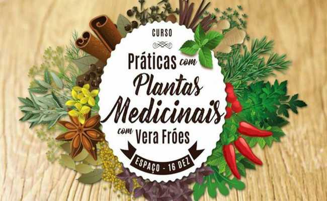 Curso prático de plantas medicinais ensina a utilizar ervas para primeiros socorros e outros usos