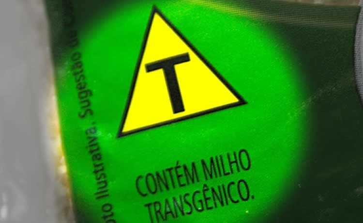 T, contém transgênico