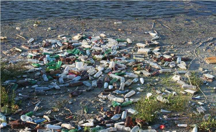 pops poluentes orgânicos persistentes