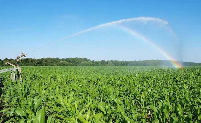 Brasil área irrigada