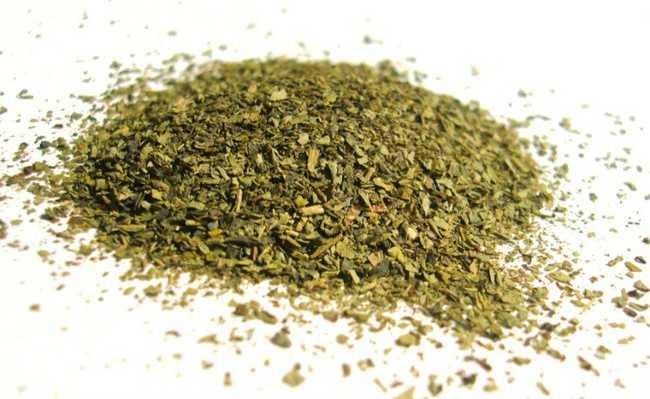 Benefícios oferecidos pelo consumo de chá verde surpreendem pelo impacto positivo do composto em pacientes com diabetes
