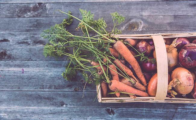 Passos ajudam na hora de fazer uma horta orgânica e como cultivá-la