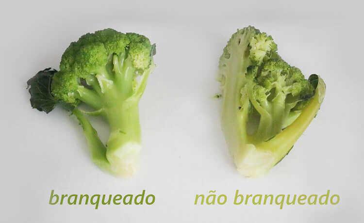 Branqueamento de vegetais: como congelar legumes, frutas e verduras para evitar desperdício