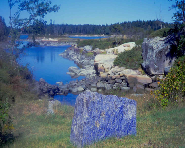 Aviva Rahmani, Blue Rocks