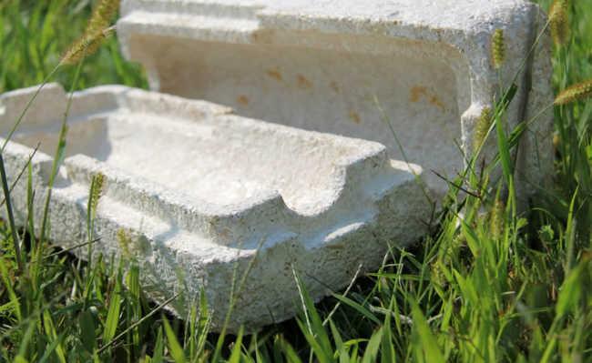 Embalagens feitas de cogumelos