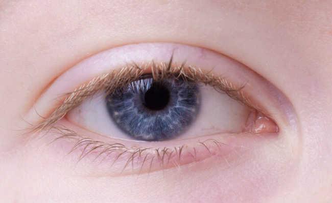 Olho Terçol
