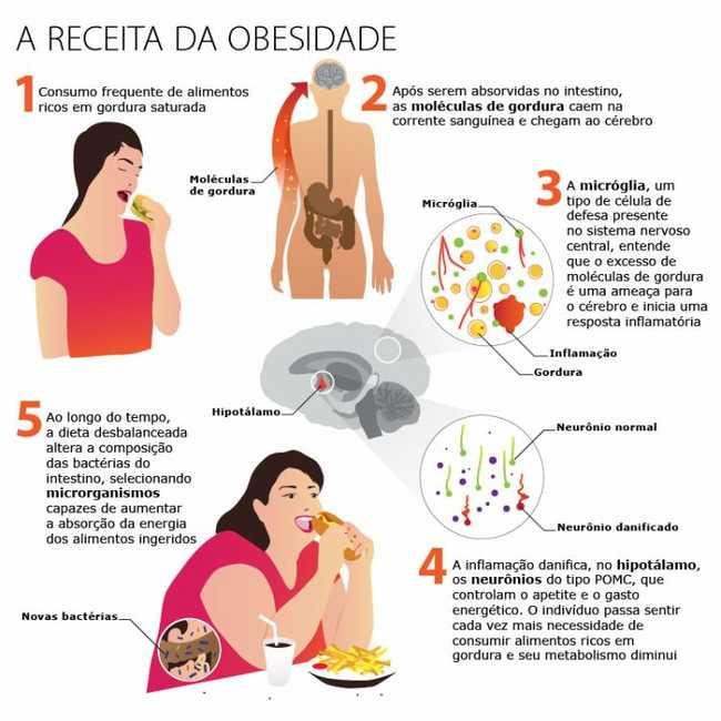 Infográfico sobre obesidade