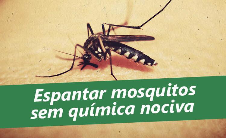 como acabar com mosquitos