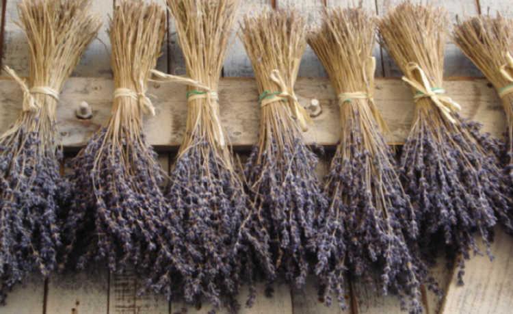 como fazer aromatizantes naturais
