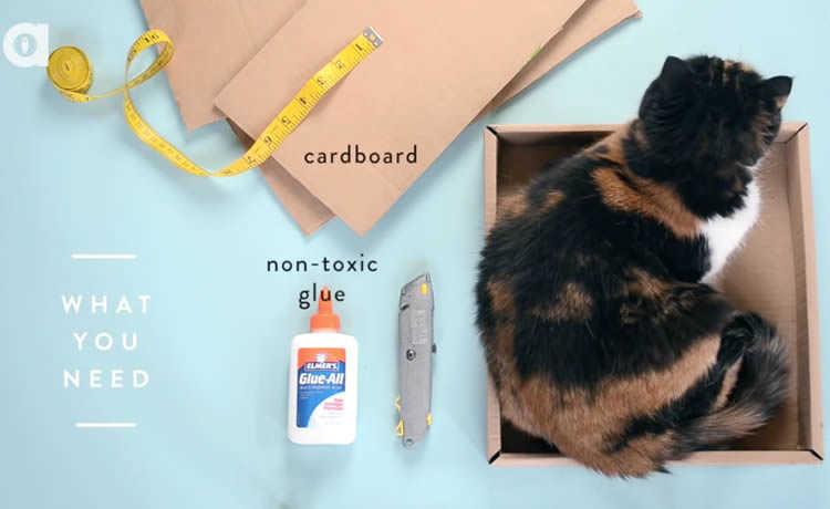 Materiais para fazer o arranhador de papelão para gatos