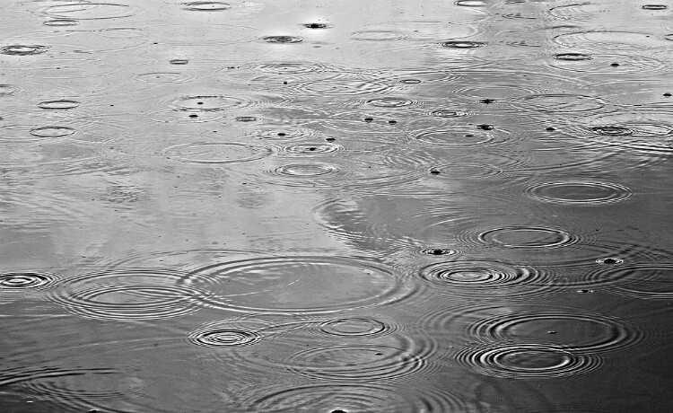 Sonhar com chuva