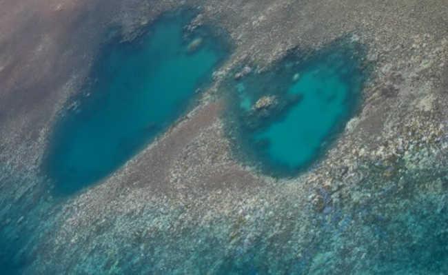 Foto aérea de área de coral