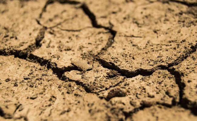 Degradação dos solos