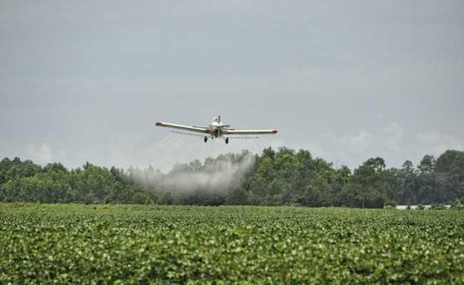 Avião aplicando agrotóxicos em monocultura