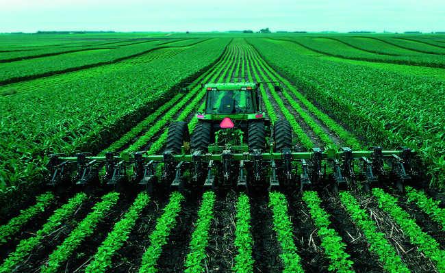 Neutralização por estoque de carbono no solo