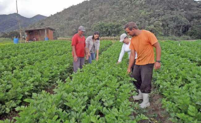 Políticas agroambientais