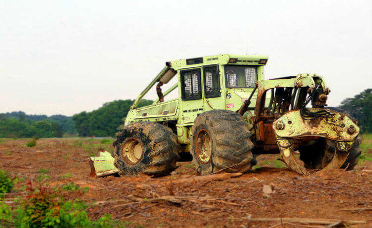 degradação do solo