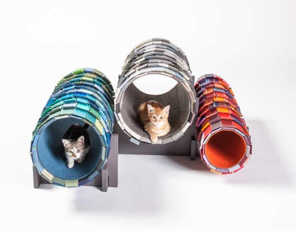 Casinhas e gatos